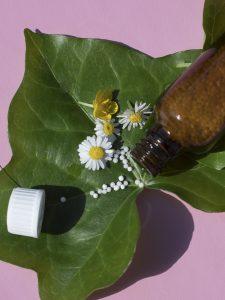 Therapien Homöopathie