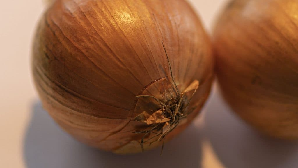 Zwiebeln für ein gutes Immunsystem (Kleine Kräuterkunde)